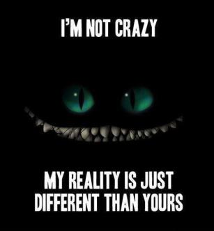 im-not-crazy-my-reality-is-just-different-than-yours-quote-1